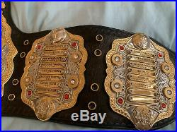 Classic shields IWGP heavyweight championship