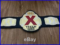 NWA TNA X Title championship wrestling belt. Dual plated