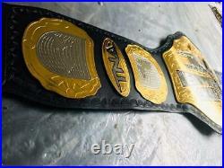 TNA Heavyweight Wrestling Championship Replica Belt Adult Size Belt Dual Plated